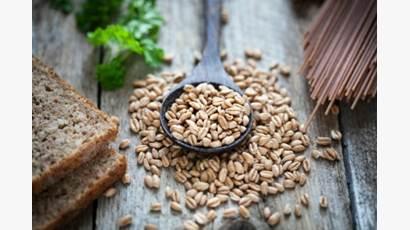 Pain de blé entier