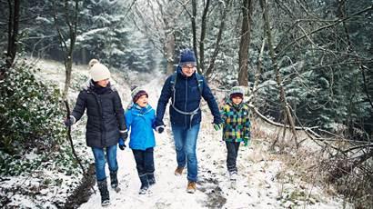 Père avec enfants, randonnée dans une forêt
