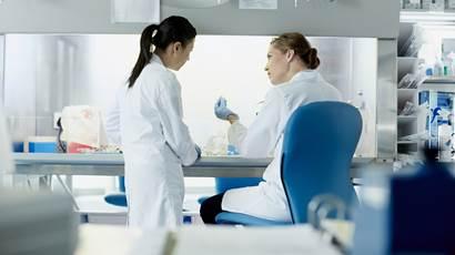 Deux chercheurs travaillant en laboratoire