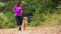 Femme qui promène son chien dans le parc